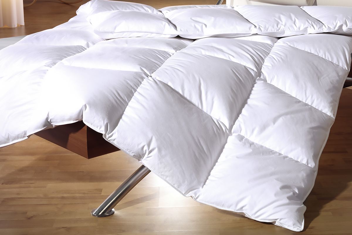 white shopping stock df in cdf home continue duvet down goose