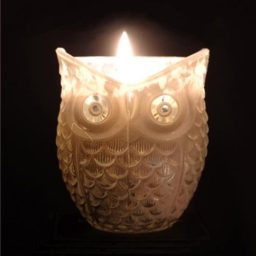noctua candle lit