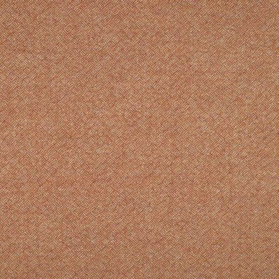 Fabric Swatch Parquet Orange