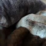 faux fur bedspread options