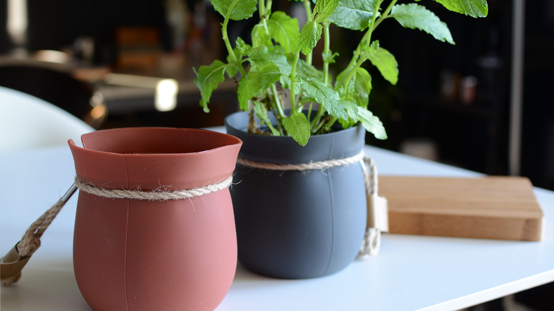 hanging-plant-pots